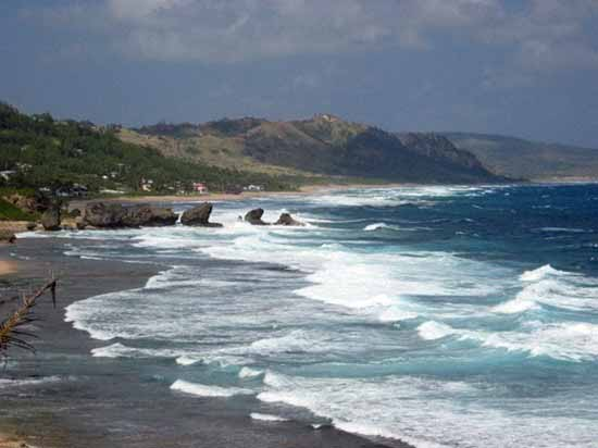 bathsheba-white-surf
